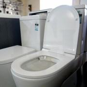 Round-D-Shape-Duraplast-Top-Fixing-Soft-Close-Quick-Release-Slim-Toilet-Seat-253101614125-8