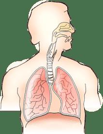 longen-chronische-hyperventilatie-symptomen-test2