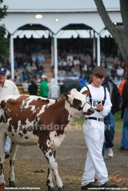 maradora horner 2014 vkh fair 03b