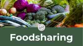 Wie funktioniert Foodsharing als Camper?