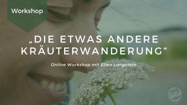 Online Workshop   Die etwas andere Kräuterwanderung