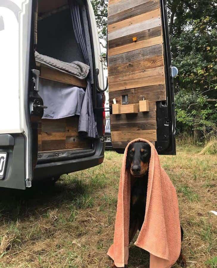 ©Road & Board Vanlife mit Hund