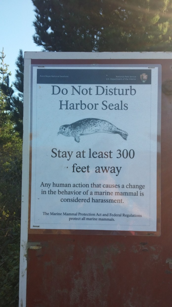 A sign warning visitors not to disturb harbor seals. FAITH MECKLEY