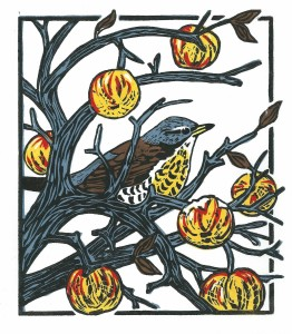 Fieldfare and Winter Apples