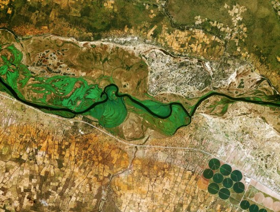 The_Okavango_River-Medium-550x417