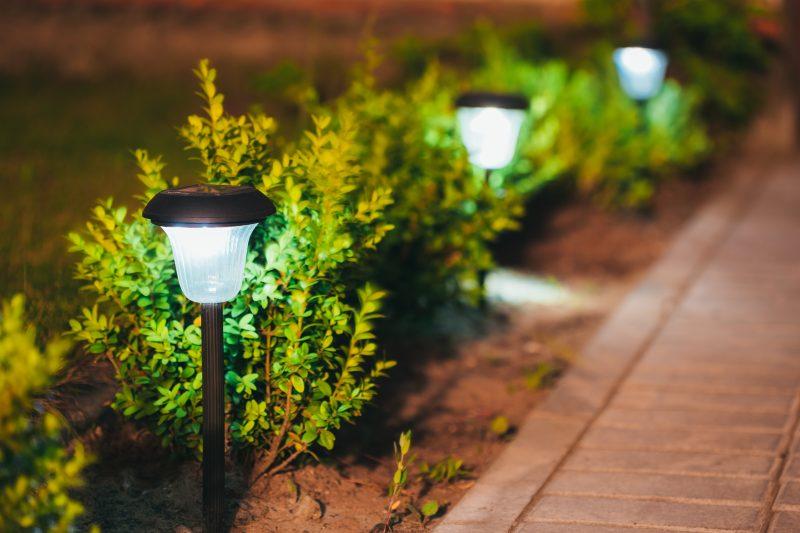 Decorative,Small,Solar,Garden,Light,,Lanterns,In,Flower,Bed,In