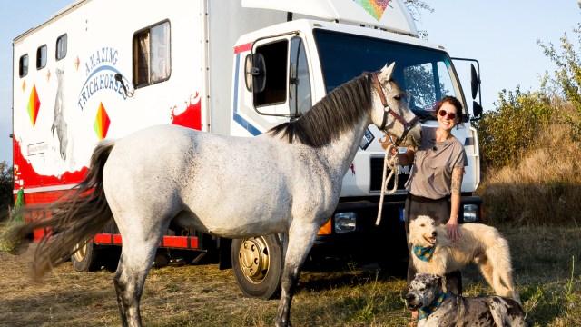 amazingtrickhorses – DIY Campervan