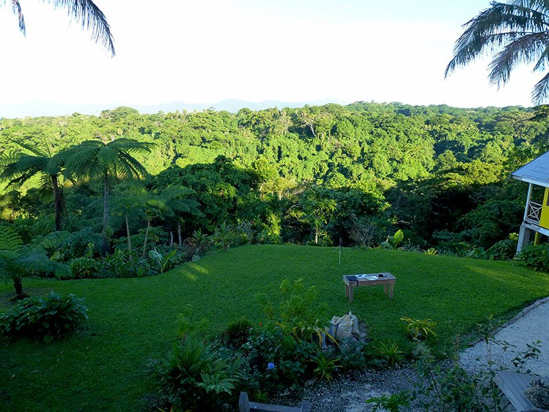 The lanscaped area at the front of Rachel's restaurant falls dramatically away into the tropical forest that extends down to the eastern coast of Tanna Island