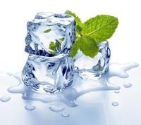 Mints, Ices & Menthol Flavours