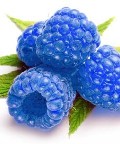 Blue Rasberry