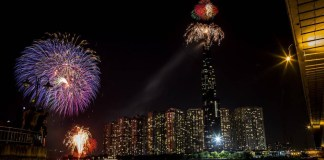 Tips to Keep Your Pets Calm During New Year's Eve Fireworks
