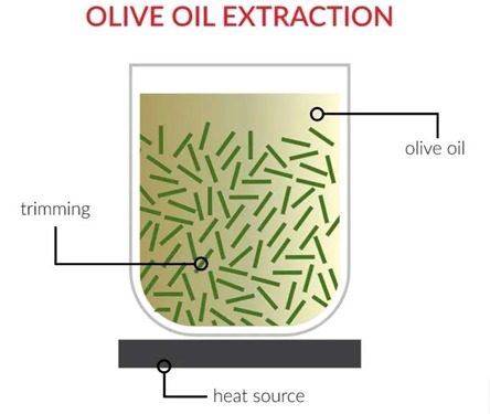 Olive oil extraction