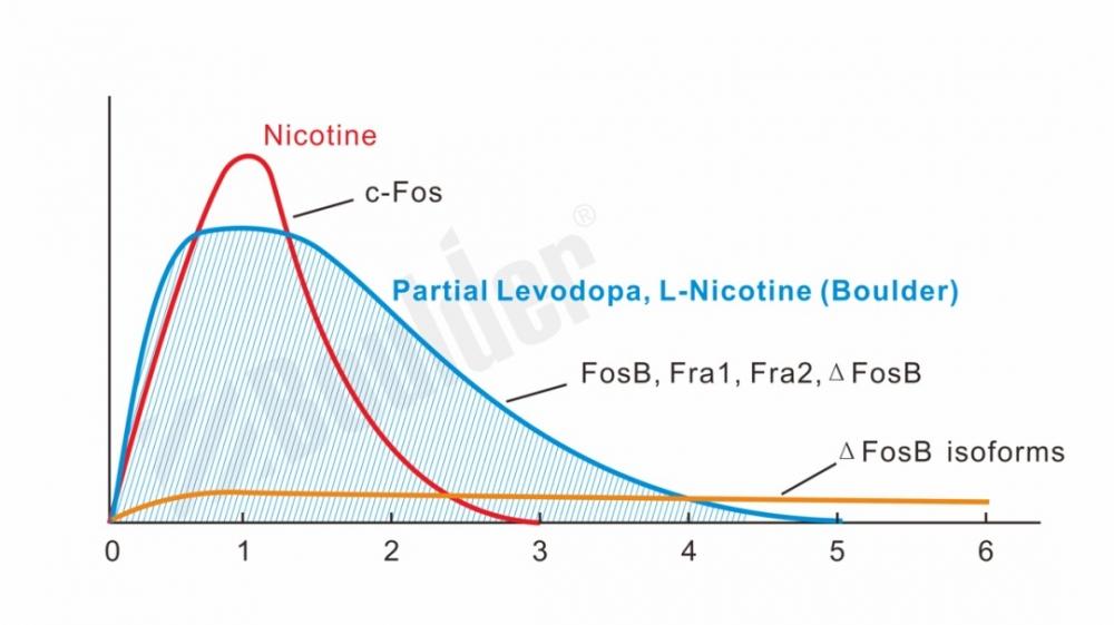 Partial Levodopa, L-Nicotine (Boulder)