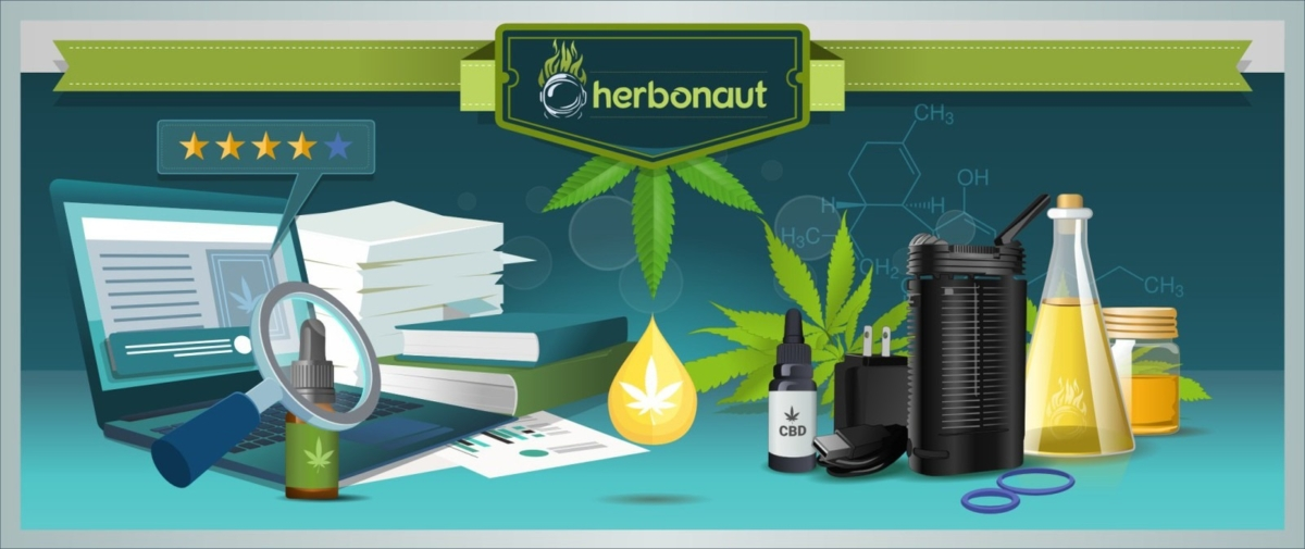 What Are the Health Risks Associated with Dry Herb Vaporizers?