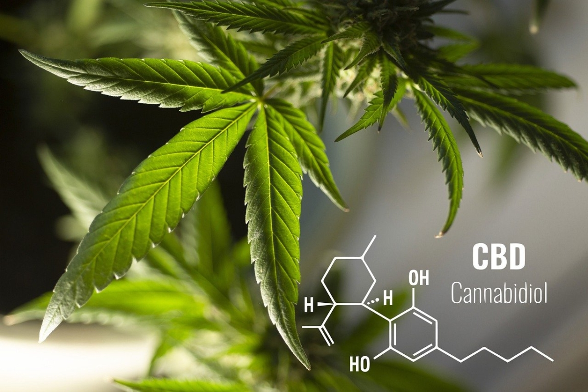 CBD THC Ratio Guide With Tips For Anxiety