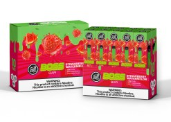 Puff Labs Boss Bar Disposable Strawberry Watermelon