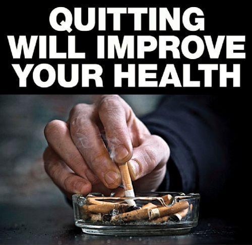 gothic realm skull deco