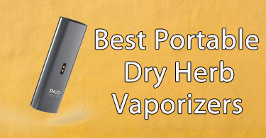 Dry Herb Vaporizer Lungs