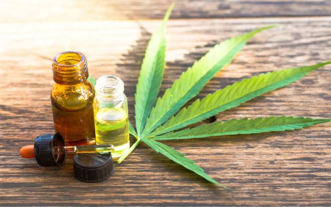 Medicamento à base de cannabis está pronto para chegar às farmácias