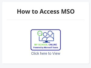 how to access MSO
