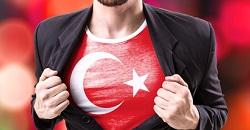 Referendum – AfD auf Türkisch