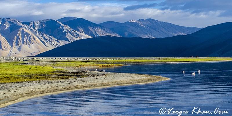 Ladakh Itinerary: Pangong Tso