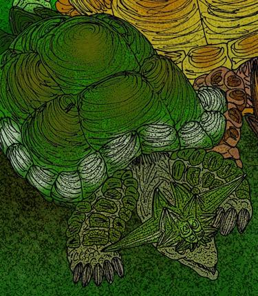 Ninjemys turtle restoration