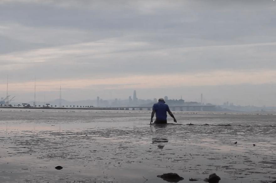 A video still of a man walking through deep sand and mud on the Berkeley shore of the San Francisco Bay, with the Bay Bridge and San Francisco skyline in the background under a hazy dawn sky.