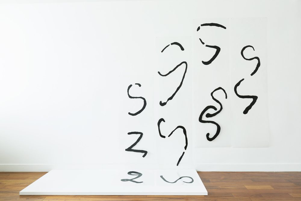 "Acrylic, handwritten iterations of the letter ""S"" and ""Z"" meander from a white panel on the ground up onto a white wall, some in broken into parts, others in thick, globby lines."