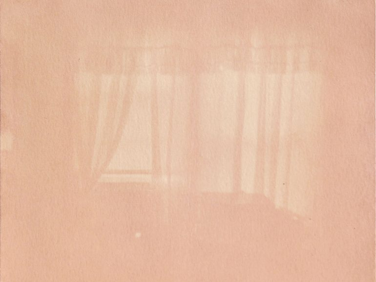 Noelle Herceg, Bernard, anthotype with avocado emulsion, 2020. A curtained window appears through a pink hue.