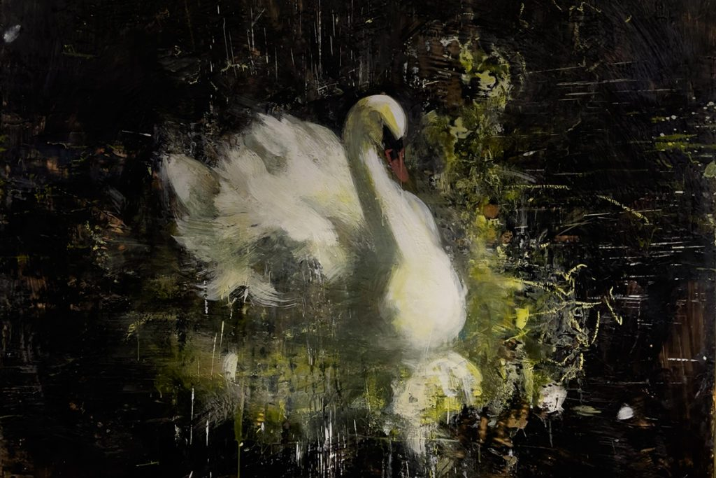 A swan sits on the border between movement and stillness, memory and moment. This soft impression of a swan, wrapped in the pinks and yellows and greens of spring, agrees into a shadowy black abyss.
