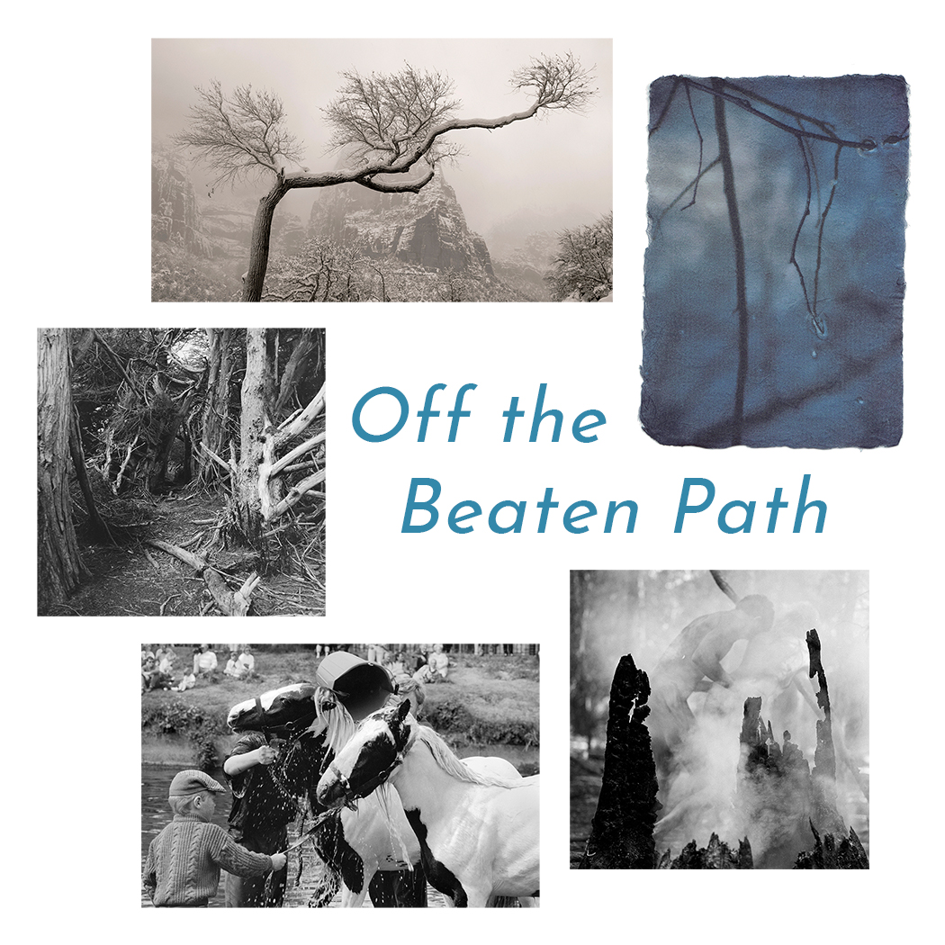 """A carousel of images encircle the text, """"Off the Beaten Path,"""" each of them stark black and white scenes of stillness and motion alike."""