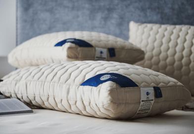 Omazz Zen Pillow ความสมดุลในวิถีแห่ง ZEN