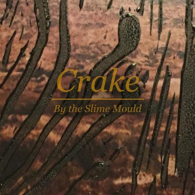 crake by the slime mould album art