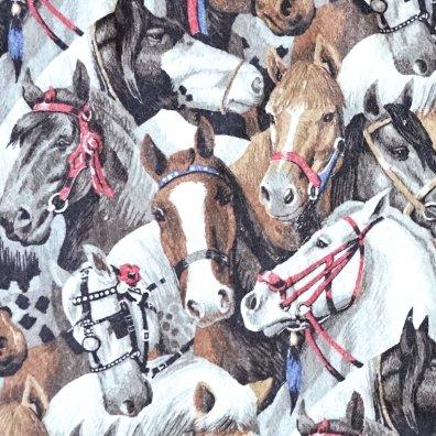Posse - Horse Blanket