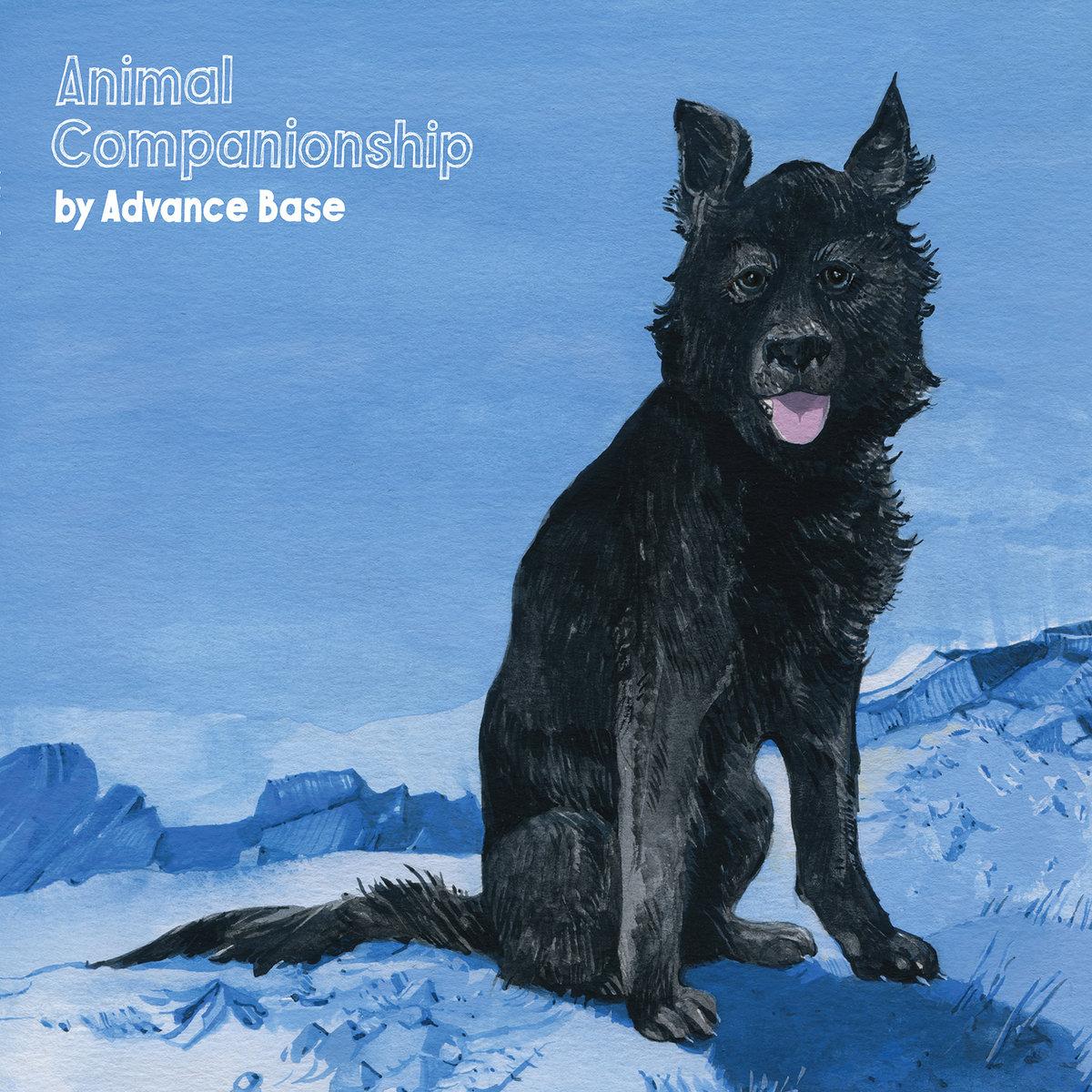 Advance Base animal companionship artwork