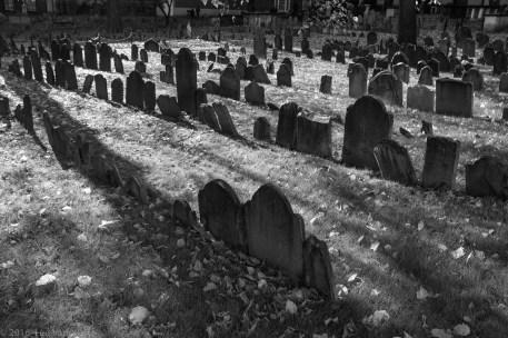 Graveyard sunlight