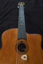 gypsy guitar-2