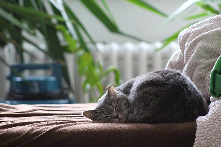 Sov godt med aircondition på soverommet