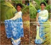 13T 12 Painted Designer Sari