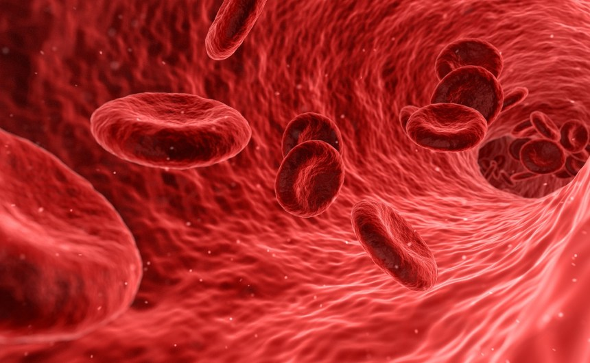 Symptoms of a Blood Clot to Watch For