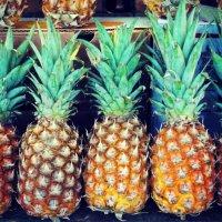 Ανανάς - Miracle Berry στο περβάζι