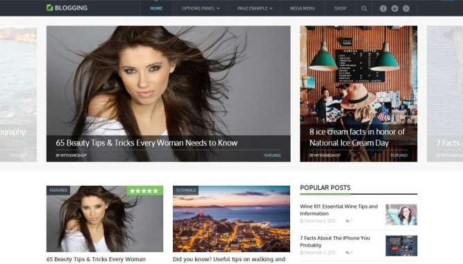 blogging theme mts