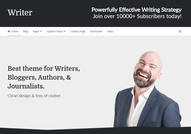 writer theme main section