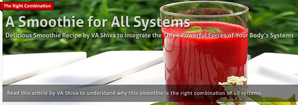 A Smoothie For All Systems