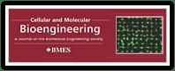 Cellular Molecular Bioengineering