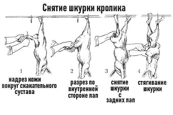 Nederdele fra kanin