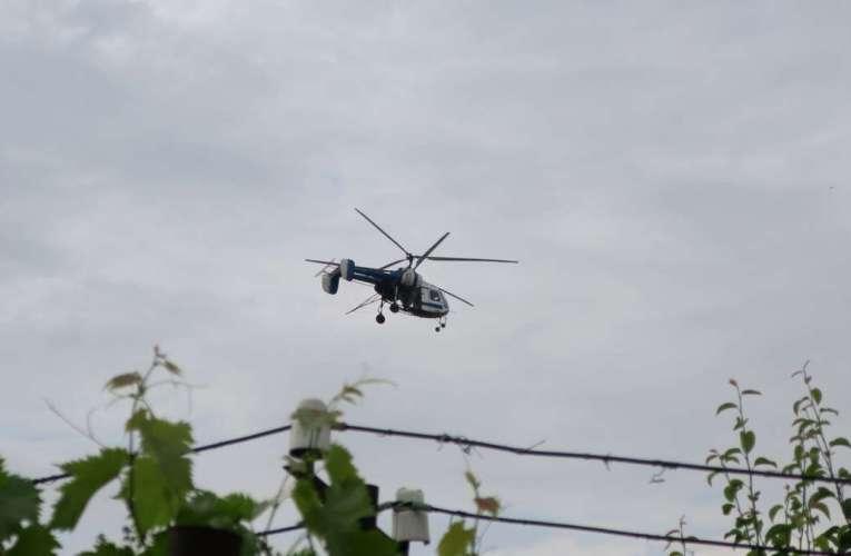 De joi, încep stropirile împotriva țânțarilor. Un elicopter va survola municipiul Vaslui, vineri dimineață!