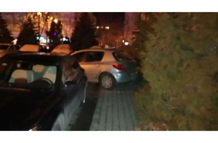 Un vasluian a parcat mașina… în brad! Așa parcare, mai rar!