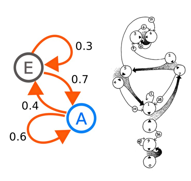 The Wikipedia entry for Markov chains includes a diagram illustrating a  simple two-step process that is surprisingly reminiscent of a diagram found  on the ...